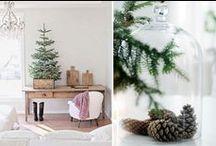 Christmas: Home & Living