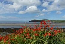 Pembrokeshire Coast National Park / Stunning coast, valleys and Mountains makes this a most varied landscape to explore.
