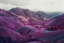 Infrared Richard Mosse / By Richard Mosse in Congo
