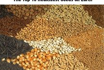 about safe food & real seeds / by pat papandreopoulos