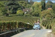 La tournée de Dom Pérignon / Vignerons d'un jour sur les traces du Père du Champagne !