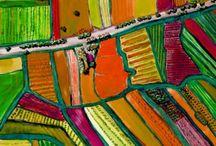 Paesaggio opera dell'uomo / Paesaggi, ambienti creati dall'opera costante dell'uomo.