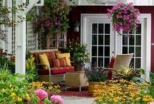 Terrariums and Garden Fun