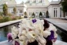 Real Weddings: Rosecliff