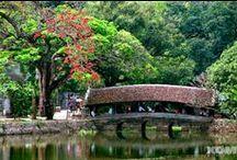 Thay Pagode / Zusätzlich zu Tay Phuong and Huong Pagode gehört Thay Pagode zu einer der berühmtesten Pagoden in Vietnam. Thay Pagode Fest wird weit bekannt dank seiner seltsamen Ritualien und traditionellen Aktivitäten wie zum Beispiel Hahnenkampf,  Ringen und Wasserpuppentheater.