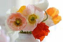 Blumen / Blumen machten unsere Welt glänzend...
