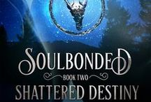 Soulbonded Book Two: Shattered Destiny / Inspiration for Shattered Destiny book two in the Soulbonded series. A M/M Fantasy romance.