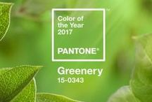 Color Trends Interior 2017 / New color and trend ideas for home decoration. Last trend on the top. Changing and growing; moving and getting new lines day after day.