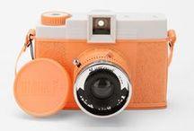 Wild Cameras / Photo Cameras