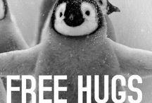 HUG! / Hug! 12 or more hugs a day is my goal. 2-legged, 4-legged, furry, feathered, scaled, covered in bark - hug!