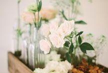 Florals / Greens