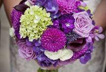 Цветы / Букеты, дизайн, ботаника