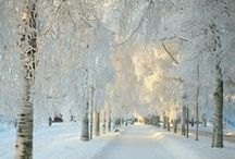 ~ Winter ~ / by Wilma