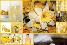 Spring and Easter Wedding Ideas / Let's help you to plan your Spring or Easter wedding. Spring is from March to May in the northern hemisphere and from September to November in the southern hemisphere. Easter can fall anywhere between March 22nd and April 25th. This mood board includes bridal gowns, bridesmaids dresses, grooms wear, wedding flowers, wedding stationery, venue decor, table decorations, centrepieces, balloon arrangements and more to compliment the colour scheme and fit the theme and time of year!