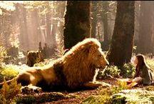 Narnia☆☆☆☆☆