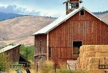 Beautiful Barns ❤