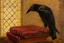 CROWS AND RAVENS / CROWS AND RAVENS crow. Crows are members of a widely distributed genus of birds, Corvus, in the family Corvidae.