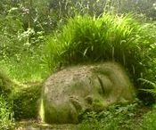 """Moss,Ferns & Woodland sculptures / And when thou art weary, I'll find thee a bed of mosses and flowers to pillow thy head..."""" -John Keats"""