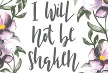 | QUOTES AND VERSES / Quotes and verses