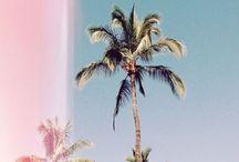 sunny days / sun please