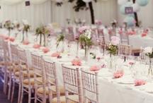 Juhlapaikan koristelu / Wedding decoration; Hääpaikan koristelu