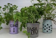 Upcycling / Aus Altem neues gestalten, Dinge aufwerten, Upcycling-Projekte für Küche, Wohnen, Garten