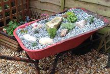 Garden / Something for the gardeners