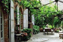 Greenhouse / Serre