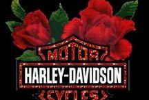 HARLEY DAVIDSON / by Lee Talbott