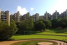 University of Johannesburg / Almost 50000 students are currently enrolled in the University of Jo'burg. In its nine falculties, UJ students are spoilt for choice with so many programmes. www.uj.ac.za