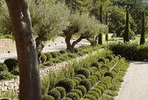 *  Green / Garden giardinaggio green