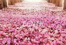 * Lente *