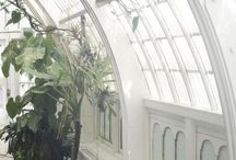 Conservatory & greenhouses