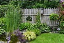 Flowers and Gardening II / by Nancy Riley