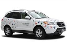 Hyundai Hope on Wheels / Glenn Hyundai serving Georgetown, Nicholasville, Richmond, Frankfort, Louisville and Lexington, Kentucky are proud supporters of Hyundai Hope on Wheels. http://www.glennhyundai.com/