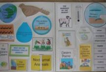 Interactive Notebooks & Foldables / Interactive Notebook resources and ideas