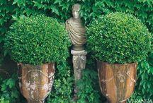 gardens / outdoor spaces