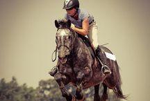 Equestrian Stuff /  Live , Laugh, Ride<3