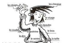 FLE - Vocabulaire (A0-A2) / Vocabulaire du français. Niveaux Débutant, Élémentaire et Pré-intermédiaire