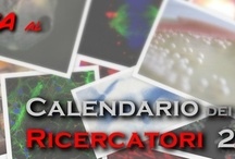 The Researcher's Calendar 2013 / Pics of Researcher's Calendar 2013 by MolecularLab.it: the beauty of science and research