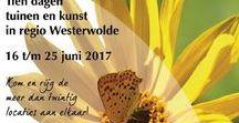 Westerwolde Rijgt / Tien dagen tuinen en kunst in 21 tuinen in Westerwolde. Royaal aangelegde en intieme kleine tuinen, strakke en romantisch vormgegeven tuinen, landschap en parktuinen. Veelal in combinatie met een kunstexpositie.  http://westerwolde.groningen.nl/evenementen-westerwolde/tuin-en-kunst-10-daagse-westerwolde