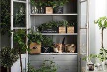 living outside | gardening