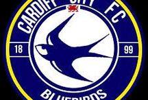 Cardiff City FC / Cardiff City Football Club