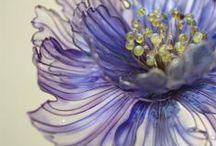 17 Flowers - Bloemen