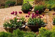 17 Garden - Gelukkige tuin