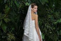 Naeem Kahn @ Divine Designs Bridal Boutique / Naeem Khan Fall 2014 Bridal Slide Show