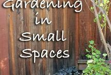 "The Compact Home Garden: Space Saving  / ""Unemployment is capitalism's way of getting you to plant a garden.""    ~ Orson Scott Card"