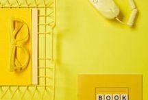 żółty / yellow