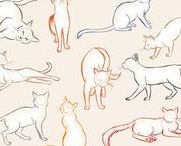 Animals - drawing help and refrences