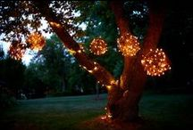 DIY Clever Ideas!!! / DIY ideas for decoration, gardening , etc.... / by Karen Alvarado